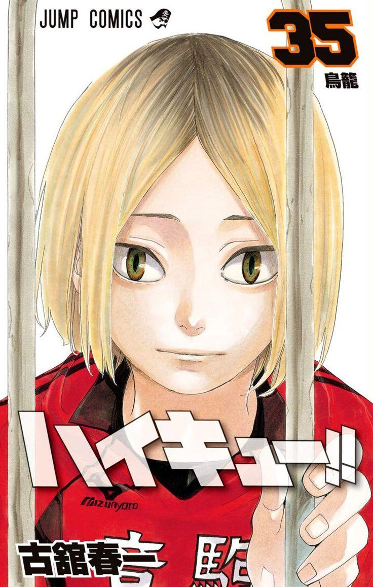 Haikyuu haikyuu anime anime manga covers