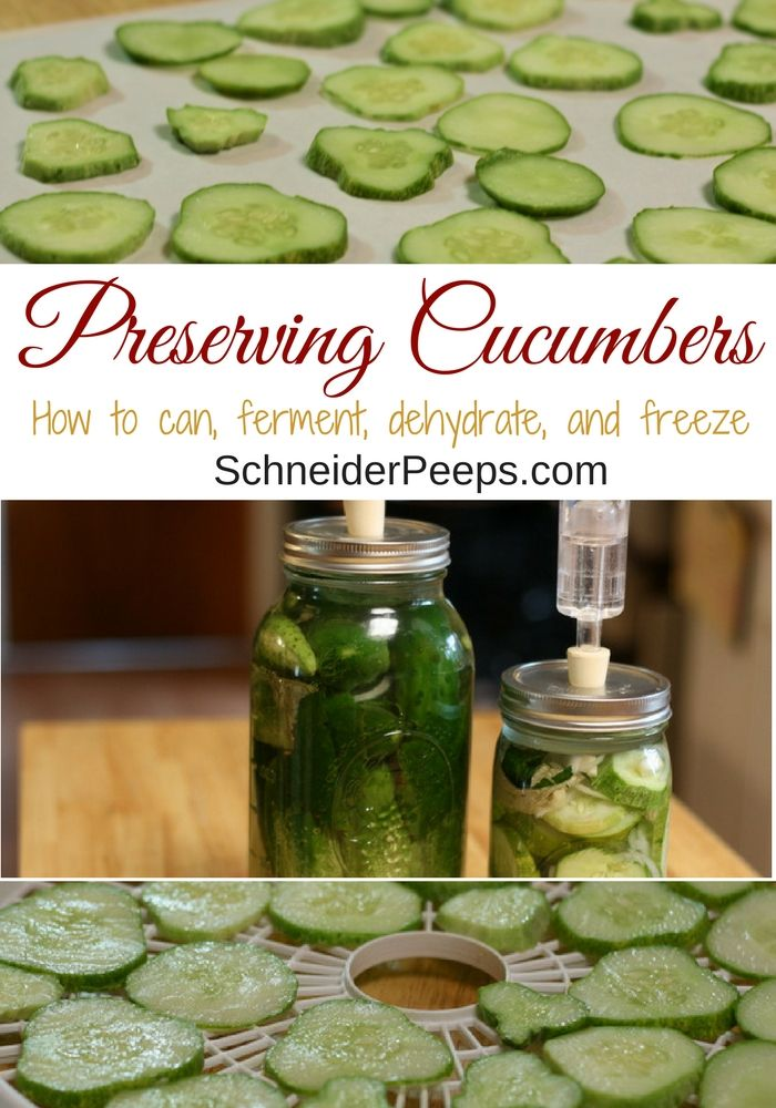 Canning pickles is not the only way of preserving cucumbers. You can also ferment, dehydrate and even freeze them. Learn how to preserve the cucumber bounty!