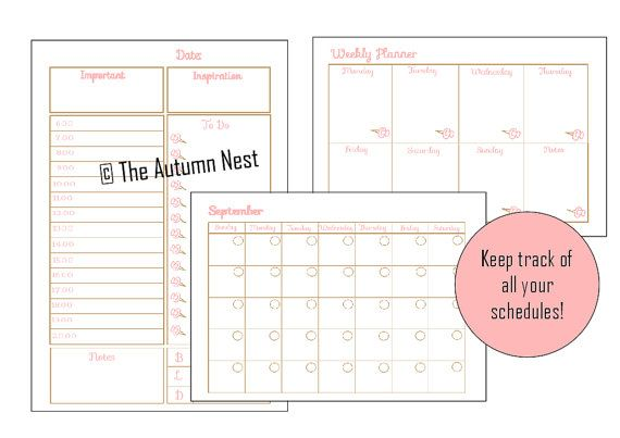 Student Planner - Daily, Weekly, 12 Months, Assignments, Exams, Schedule, Notes, To Dos - Printable A5 - Instant Download