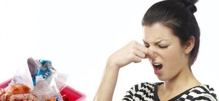 ¿Cómo quitar manchas de tinta de la ropa o de la madera? ¿Sabías que puedes limpiar el vino tinto con vino blanco? Éstos y muchos otros trucos para dejar tus objetos como nuevos.