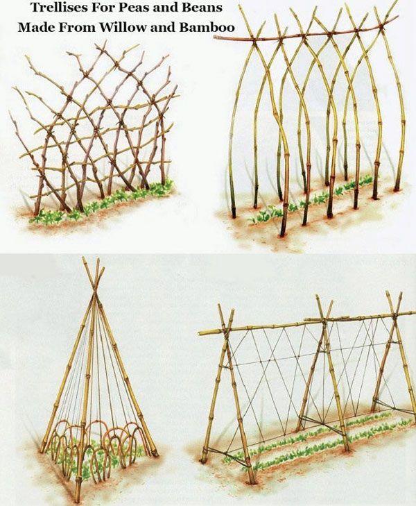 Fyra olika spaljéer av bambu och pil