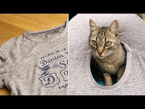 Aprende a hacer una preciosa casita para tu gato con una camiseta | La voz del muro