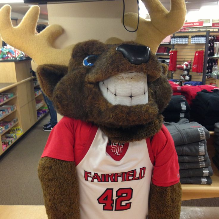 Fairfield Stags Mascot, Lucas.