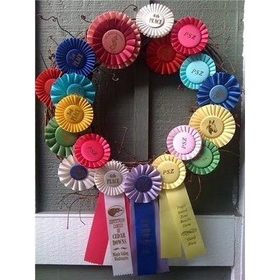 What You Can Do With Horse Show Ribbons