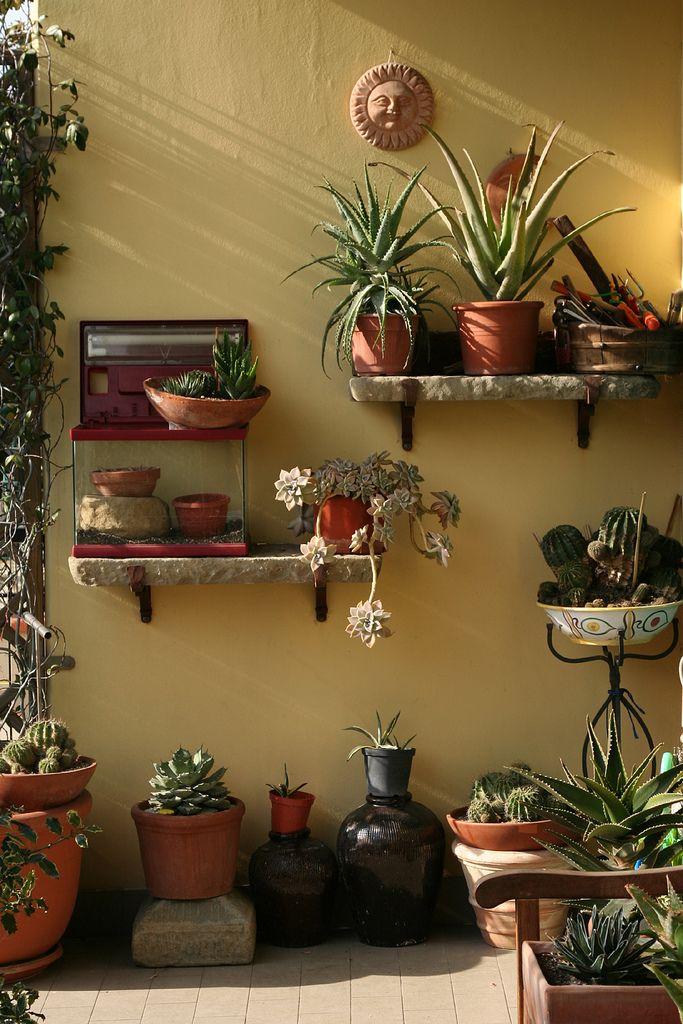 la mia casa | un pò di sole d'inverno | morill@ | Flickr