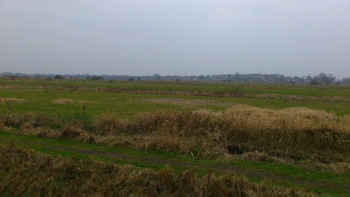Bossche Broek 's-Hertogenbosch