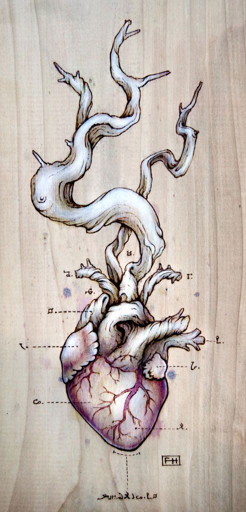 Driftwood Heart, by Fay Helfer. Pyrography (which means writing with fire), natural pigment & pastel on wood.