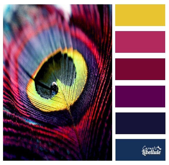 Eggplant Color Schemes: 17+ Best Ideas About Eggplant Color On Pinterest