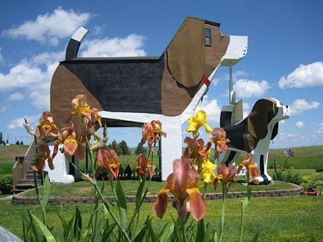 Dog Bark Park Inn, Cottonwood, Idaho