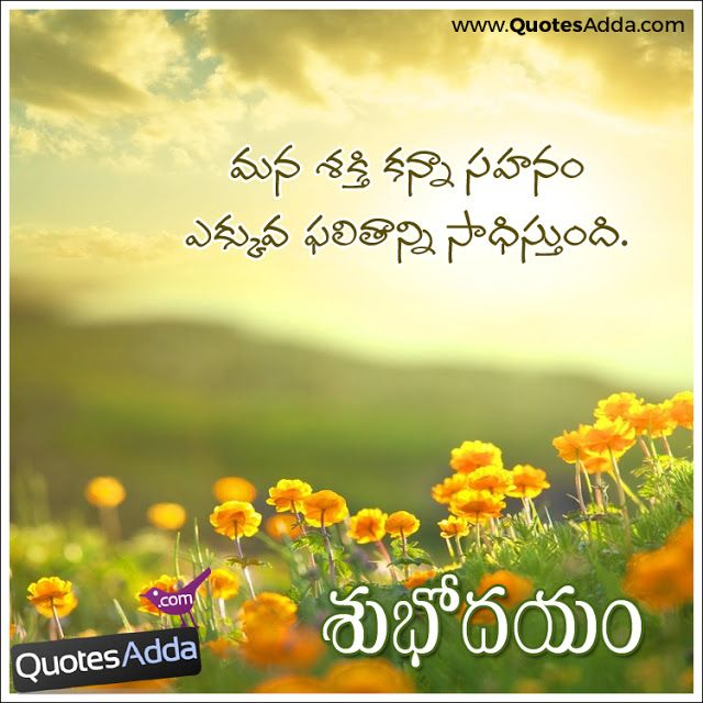 Here is Telugu New Whatsapp Have a  Great Day Quotes images, Best Telugu Good Morning Messages, Telugu Good Morning Wishes Lines, Happy Tuesday Greetings and Messages in Telugu, Happy Morning Quotes and Telugu Motivated Messages Lines. Quotes Garden Telugu Good Morning Images and Quotes Wallpapers. Like Share Follow Telugu Good Morning Pics.