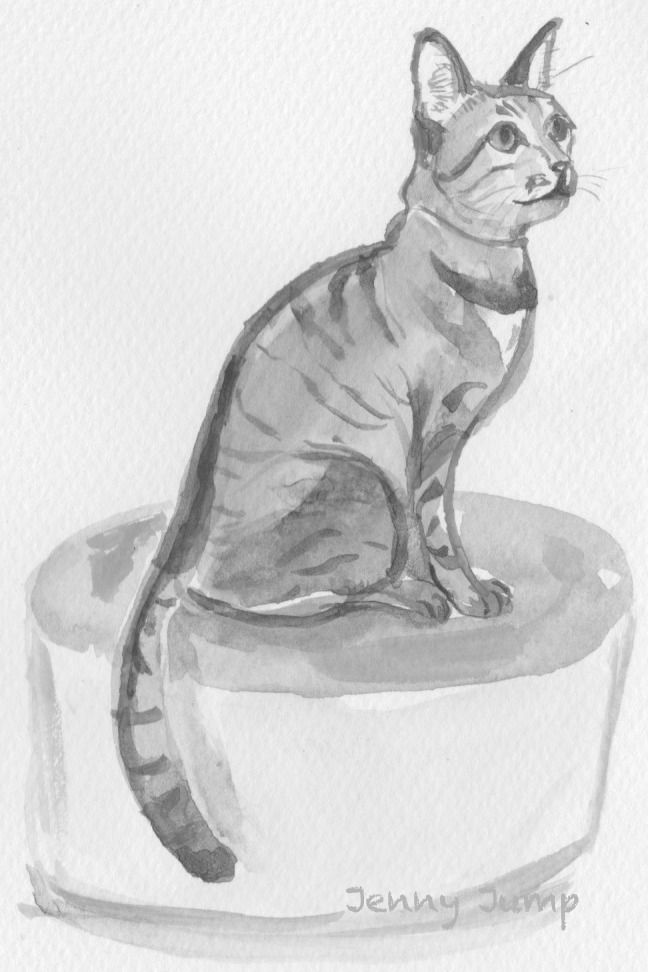 Tabby cat from cat cafe in Tokyo, watercolour,  10cm x 15cm, Jenny Jump