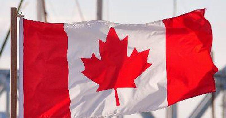 ¿Qué simboliza la hoja de maple en la bandera de Canadá?. Al día de hoy la bandera canadiense consiste de una hoja roja de maple de once puntos en un espacio en blanco, con franjas rojas anchas y verticales flanqueando el lado derecho e izquierdo de la bandera. Esta bandera moderna fue aprobada por el Parlamento el 22 de octubre de 1964. No obstante, no fue proclamada en la ley hasta que fue aprobada el ...