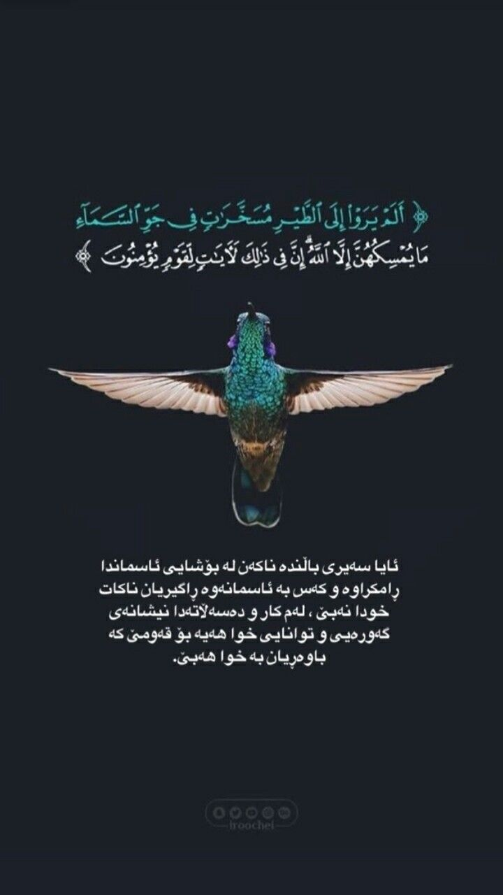 Pin By Alla On جوانترينه كان Quran Movie Posters Quotes
