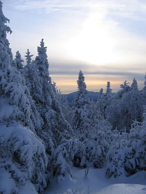 Winter by kevinjh87, via Flickr;  Jay Peak, Vermont
