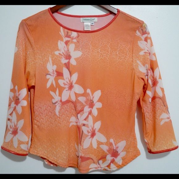 SALEColdwater Creek Nylon Top M Coldwater Creek Casual top.  Floral Multi-color 100 % Nylon Ladies Medium size. Bust 38 in Coldwater Creek Tops