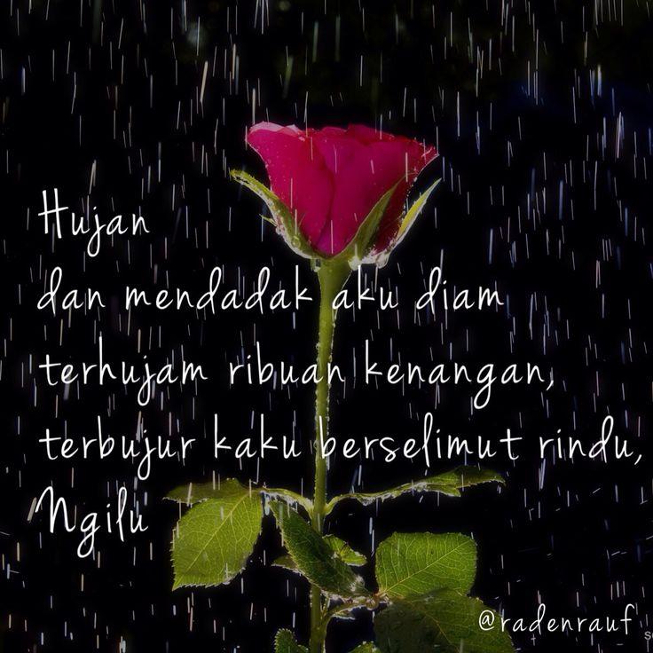Hujan, Rain