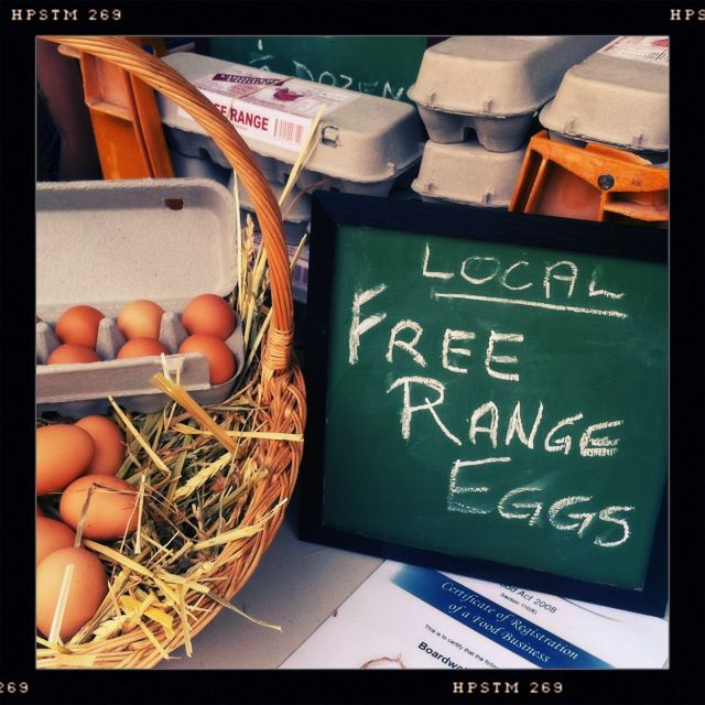 Free Range eggs from the Peel region!