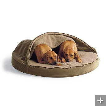 I want something like this for Maddie since she LOVES to Burrow.