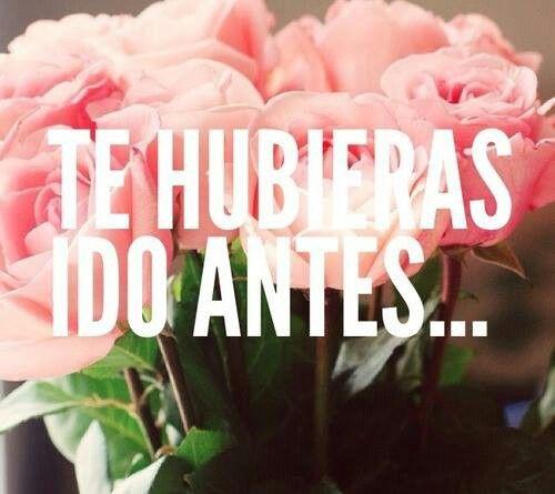 Te Huebias Ido Antes -Julion Alvares-