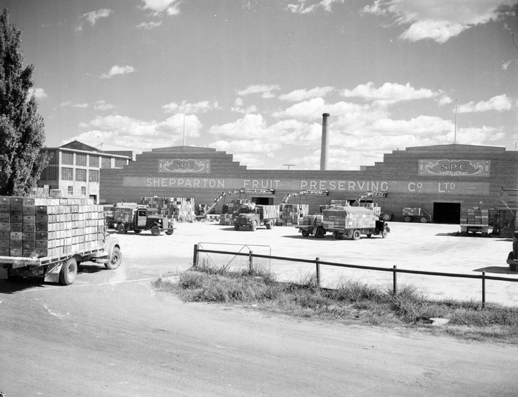 1955 Fruit transport arriving at SPC canning factory Shepparton. VicRoads Centenary 1913 - 2013. www.vicroads.vic.gov.au/centenary