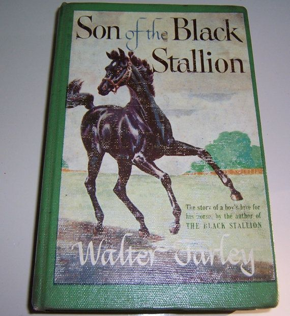 Black Stallion Book Cover : Best horses in art posters book covers images on