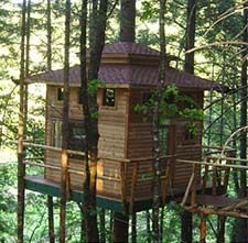 Vertical Horizons Treehouse Paradise Bed & Breakfast. Cave Junction, OR. Breakfast is prepared by a gourmet cook using local, fresh, organic ingredients! Located in Southern Oregon, near the Redwood Forest, the Oregon Caves, and the beautiful Coastline. I want to go there!!!