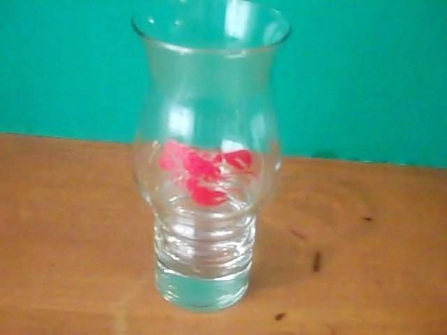 Red Lobster VINTAGE! 1980's Hurricane Glass 7 in