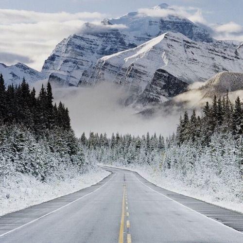 Es de mala educación para mantener una espera viaje por carretera.  Cualquier excusa para conducir a las montañas.  Foto por Gavin Hellier.  (En Icefields Parkway, las Montañas Rocosas)