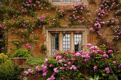 246 Best Tuscan Decor Images On Pinterest Haciendas Tuscan Design And Home