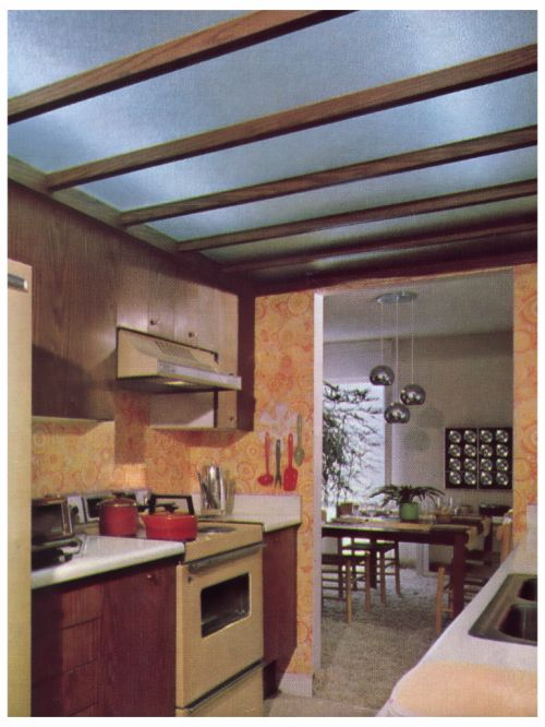 Kitchen 1970s MCM Influence But Transitional From Classic Form DecorVintage