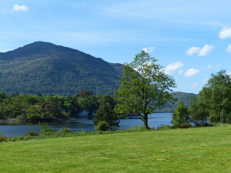 Lush Killarney