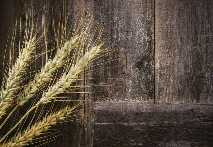 #Grain market roundtable: #Wheat futures expected to #trade sideways https://brindavanudyogindia.wordpress.com/2017/11/24/398/?utm_content=buffer7b5c2&utm_medium=social&utm_source=pinterest.com&utm_campaign=buffer