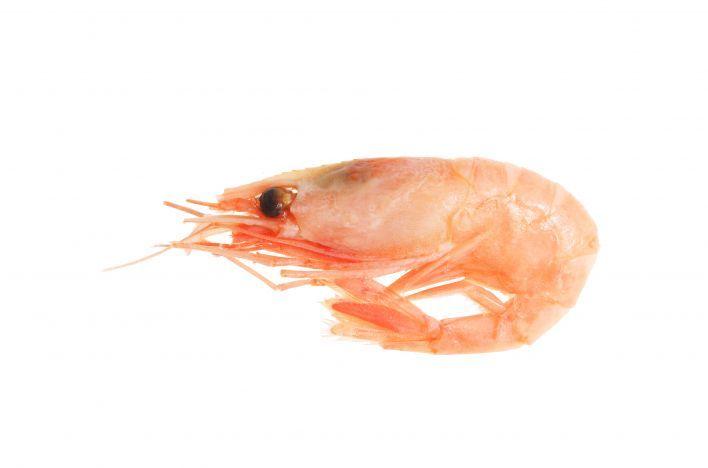 Noorse of roze garnalen, gevangen in de Noord-Atlantische Oceaan en de Barentszee. Er zijn er genoeg. Let wel: koop bij voorkeur diepgevroren, en niet gepeld. Van het moment dat er gepeld wordt, zijn er in de meeste gevallen additieven en bewaarmiddelen toegevoegd.
