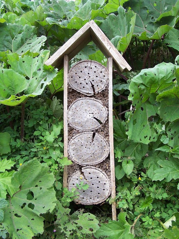 14 Best Hmyz 237 Domečky V Uměleck 233 M Pojet 237 Images On