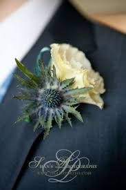 Image result for sea thistle buttonholes
