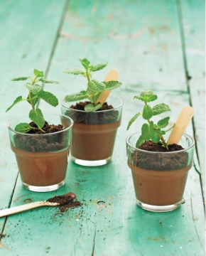 Chocolate mousse planters :)