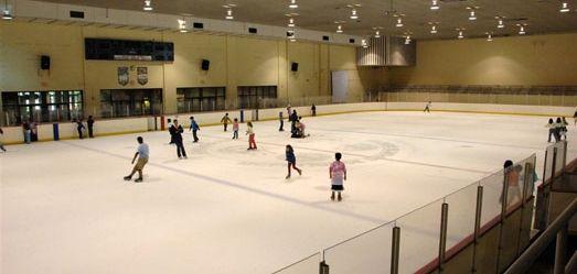 Housing the Chicago Park District\'s only indoor ice rink & indoor ...