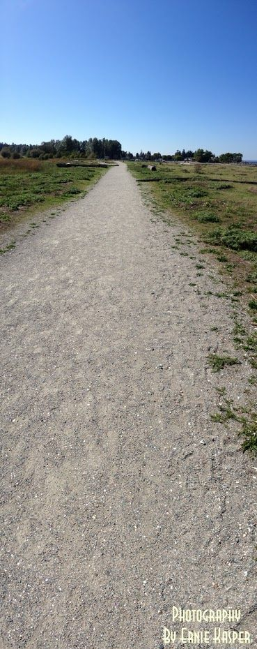 #blackiespit  #path #walkway   #whiterock   #panoramaphotography  by Ernie Kasper
