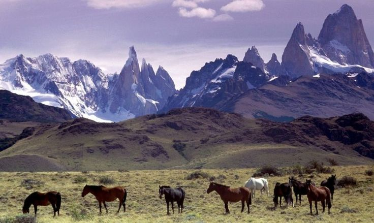 Torres del Paine, Chile | Torres del Paine National Park in the Patagonia Region of Chile, South ...