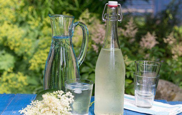 elderflower cordial and wine