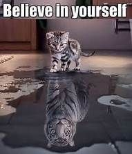 Believe in Yourself Kitten Tiger Reflection Bing images