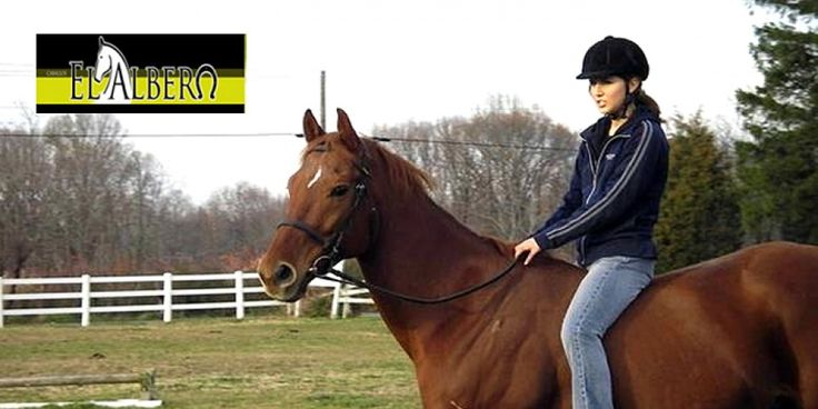 El cupón incluye según opción elegida:  - Para una persona: un paseo a caballo de 60 minutos de duración, acompañado por un monitor por sólo 9€  - Para dos personas: un paseo a caballo de 60 minutos de duración, acompañado por un monitor por sólo 15€  * El monitor te indicará como manejar la montura y solventará cualquier duda que tengas.