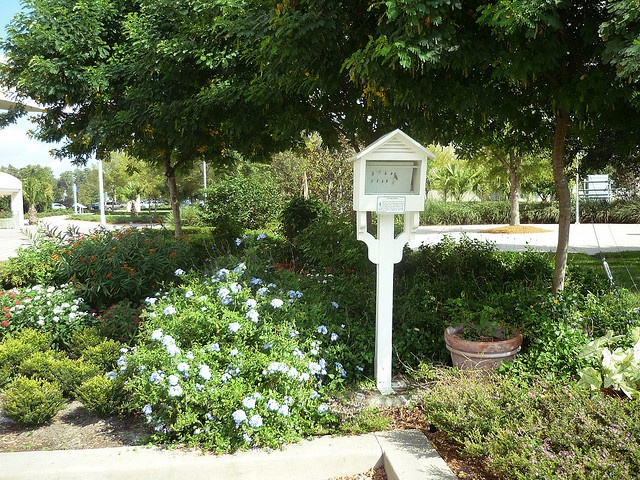 Free in orlando kissimmee see the butterfly garden at for Butterfly garden orlando