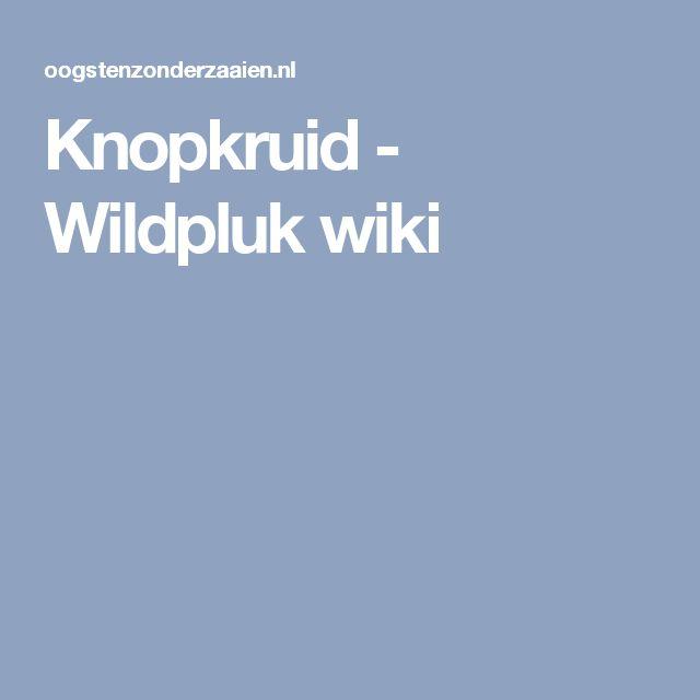 Knopkruid - Wildpluk wiki