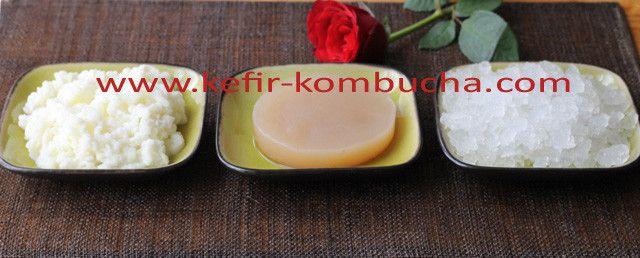 recettes au kefir de lait, kefir de fruits et kombucha recipe