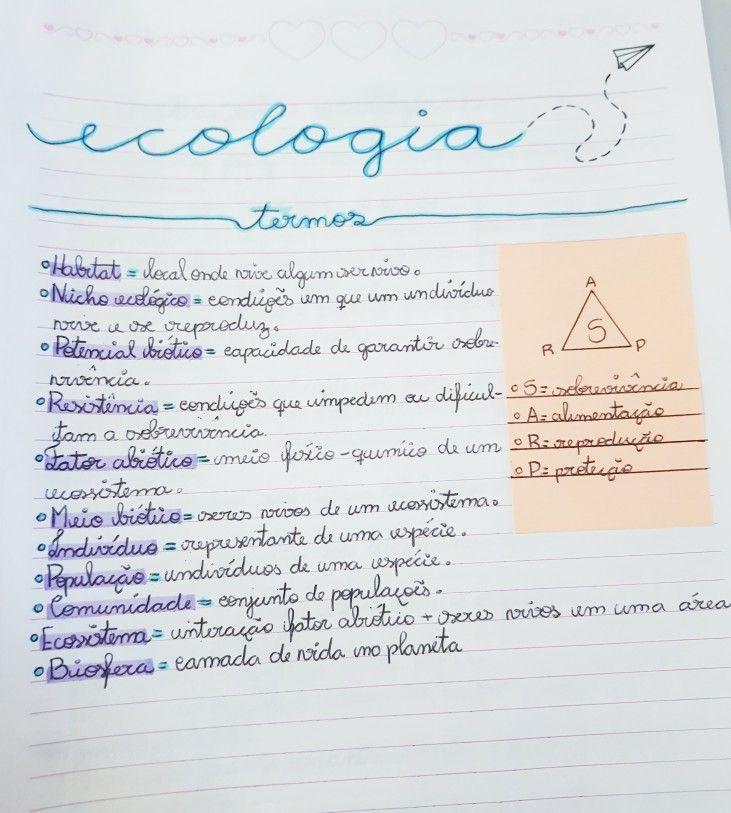 Resumo De Biologia Ecologia Resumoes Biologia Resumo