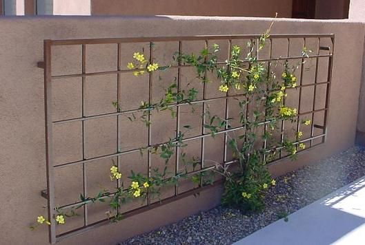 An outdoor metal trellis similar to this mounted on your brick wall for the honeysuckle.