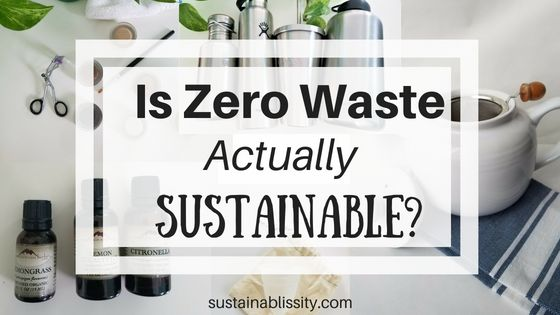 Is Zero Waste Actually Sustainable – Noemi Castro