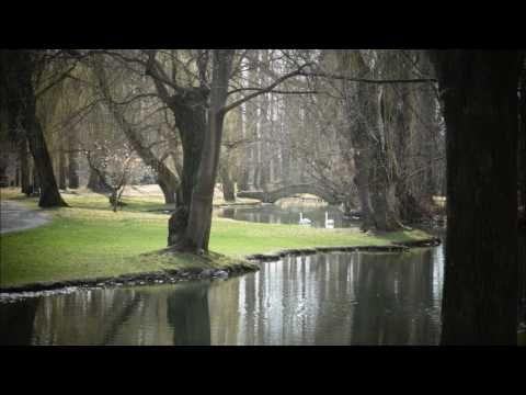Classical piano music (Dario Gatto Pianist)