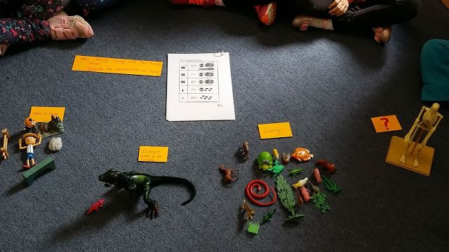 Visibly Learning in the Early Years: Toys, Science & SOLO; Classifying With 5 Year Olds